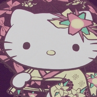 Camiseta Hello Kitty Kimono Sanrio Collection